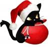 Black__Cat