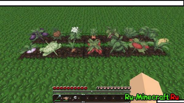 [1.1] RuneCraftory - фермерство в Minecraft