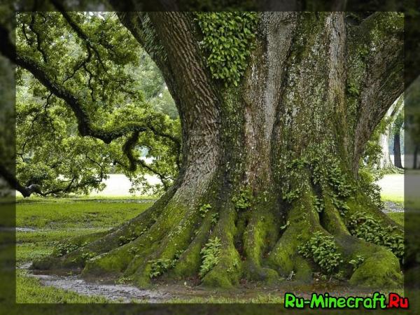 [1.2.5] Huge Trees are Huge v2.1 - мод, добавляющий большие деревья