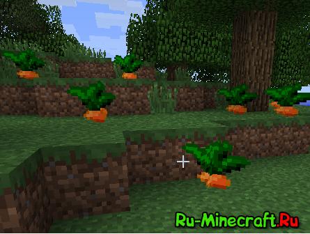 ChocoCraft - Забавные птицы Чокобо! [1.12.1] [1.8] [1.7.10] [1.6.4] [1.5.2]