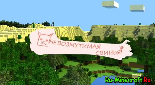 [Video] Невозмутимая свинья - веселое видео про свинью