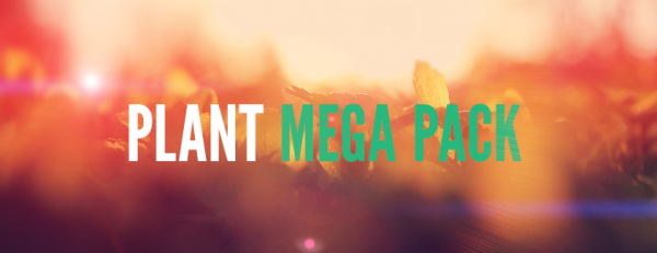 [1.6.4/1.7.2]Plant Mega Pack— еще больше растений!