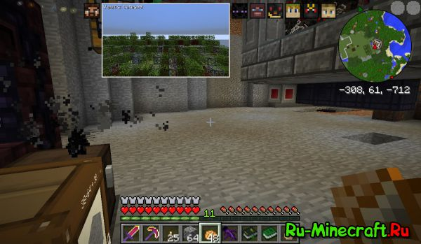 Picture in Picture (PiP) [1.12.2] [1.10.2] [1.7.10]