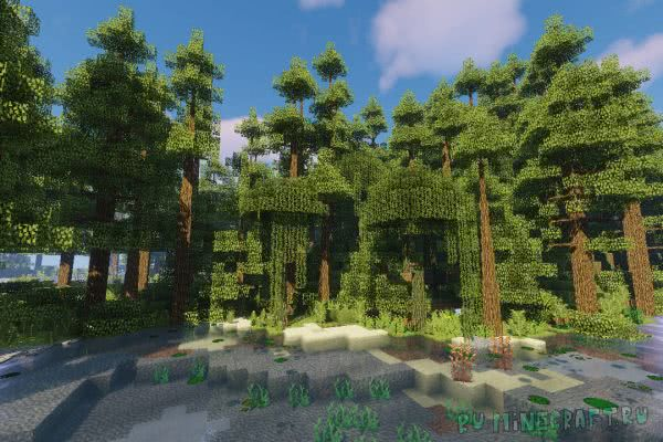 Dynamic Trees - Biomes O' Plenty Compat [1.12.2]