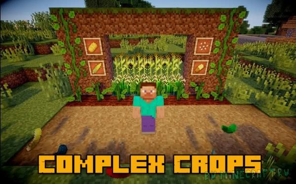 Complex Crops - кукуруза, огурцы, рис [1.12.2] [1.7.10]