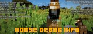 Horse Debug Info - информация о лошади [1.15.2] [1.13] [1.12.2] [1.11.2] [1.10.2]