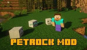 Petrock Mod - питомец камень [1.16.5] [1.15.2] [1.14.4] [1.12.2] [1.10.2]