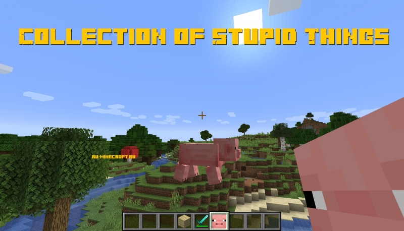 Collection of Stupid Things - тупые вещи [1.14.4]