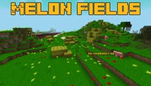 Melon Fields - поля с арбузами [1.12.2]