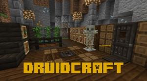 Druidcraft - вещи друидов [1.16.5] [1.15.2] [1.14.4]