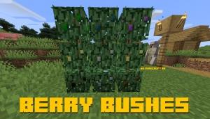 Berry Bushes - кусты с ягодами [1.14.4]