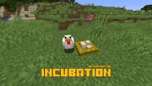 Incubation - гнездо для яиц [1.16.1] [1.15.2] [1.14.4]