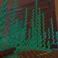 Извилистые лианы