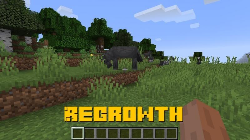 Regrowth - реалистичная трава [1.16.4] [1.15.2] [1.14.4]