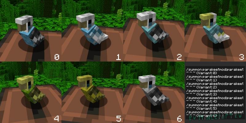 The Parakeet Mod - новый вид попугая [1.16.3] [1.15.2]