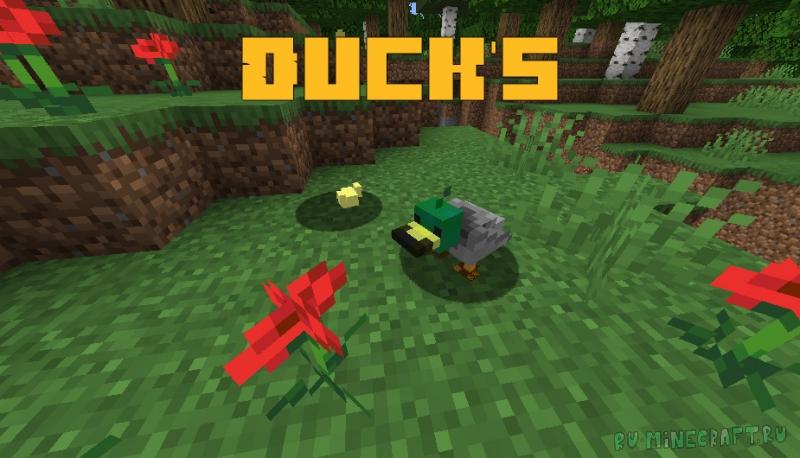 Duck's - уточки в майнкрафте [1.15.2]