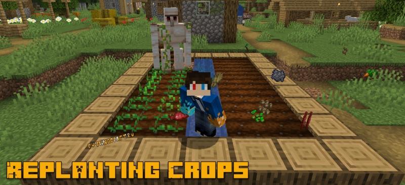 Replanting Crops - авто посадка семян при сборке [1.16.5] [1.15.2] [1.14.4] [1.12.2]