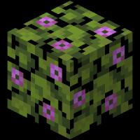 блок цветущей листвы азалии