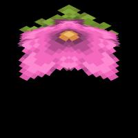споровый цветок