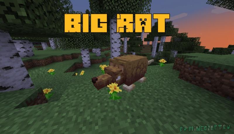 Big Rat - большая крыса [1.16.5]