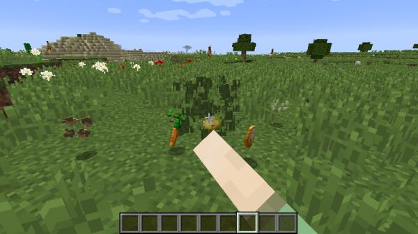 Seed Drop Mod - семена выпадают из травы, настройка дропа [1.17.1] [1.16.5] [1.12.2] [1.11.2] [1.7.10]