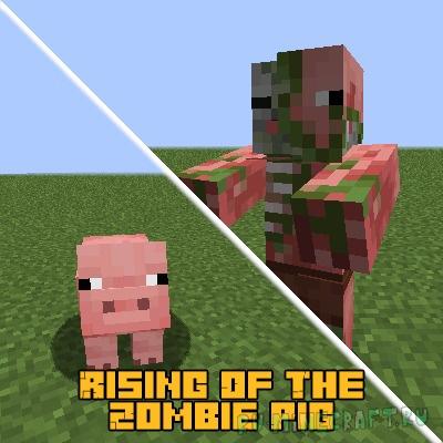 Rising Of The Zombie Pig - превращение свиньи в зомби пиглина [1.16.5]