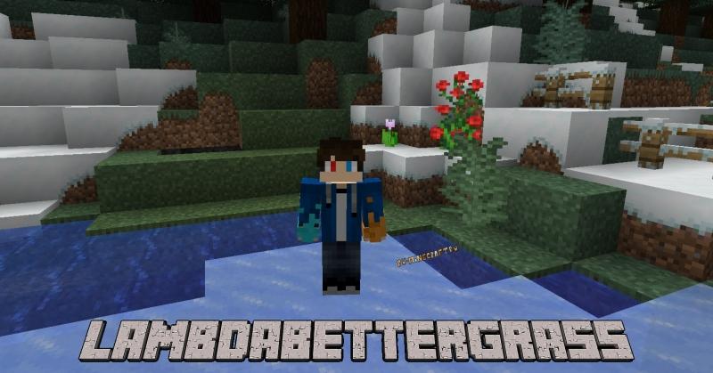 LambdaBetterGrass - реалистичная трава (дерн) и снег [1.17.1] [1.16.5]