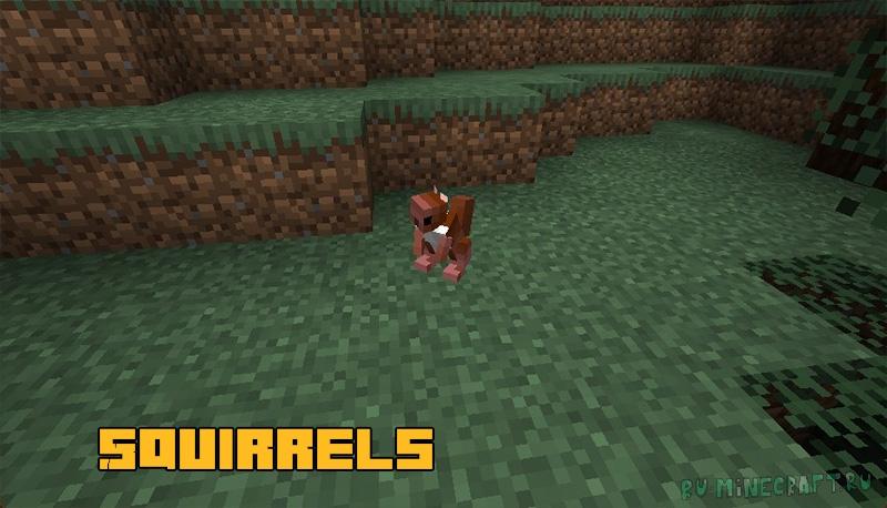 Squirrels - белочки [1.17.1]
