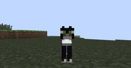 Minecraft как сделать кот