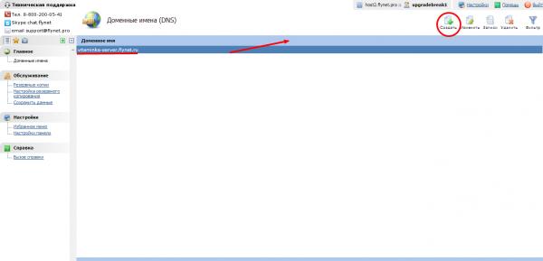 Как сделать буквенный ip для сервера